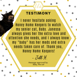 HHK Testimony - Jill Hiebert